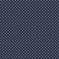 basics-2016-polka-dots-noite-full