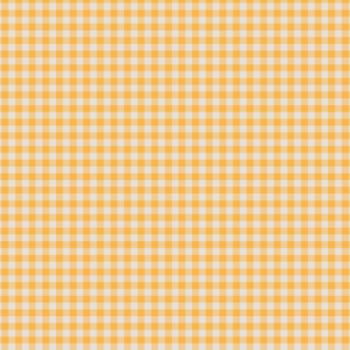 basics-2016-vichy-amarelo-full